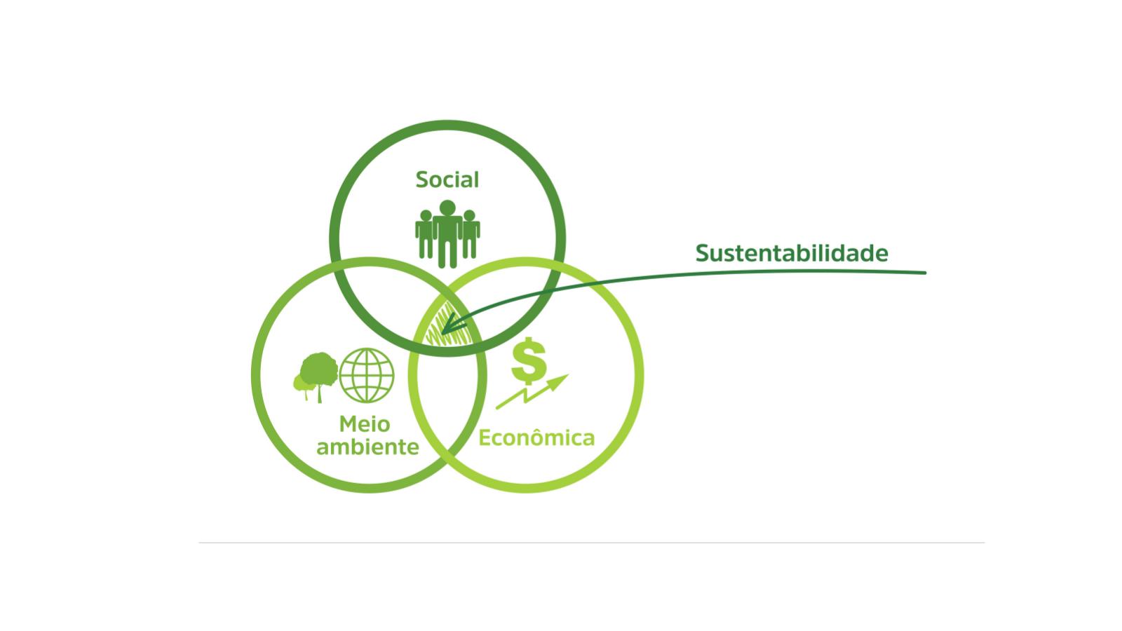 """""""Tripé da Sustentabilidade: entenda o que são e como eles são importantes para uma empresa mais responsável"""""""